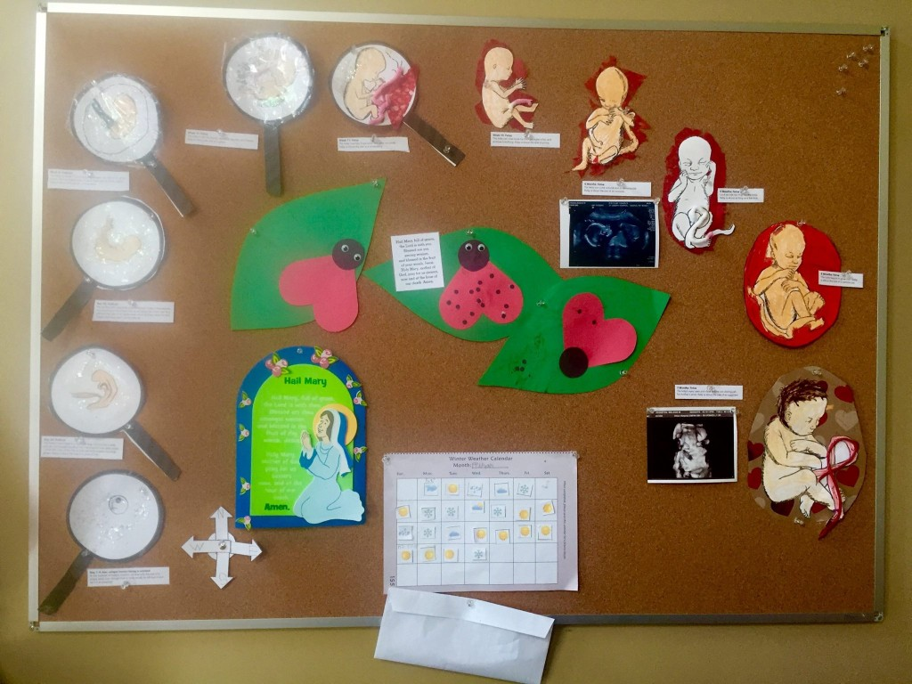 The J. family made their Miracle of Life display on a bulletin board. Notice the Ladybug Warriors crafts.