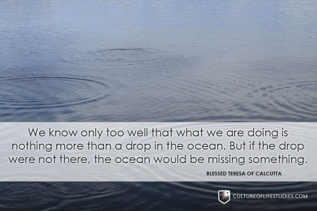 """""""We Know Only Too Well That What We Are Doing In Nothing More Than A Drop In The Ocean. But If The Drop Were Not There, The Ocean Would Be Missing.""""—Mother Teresa"""
