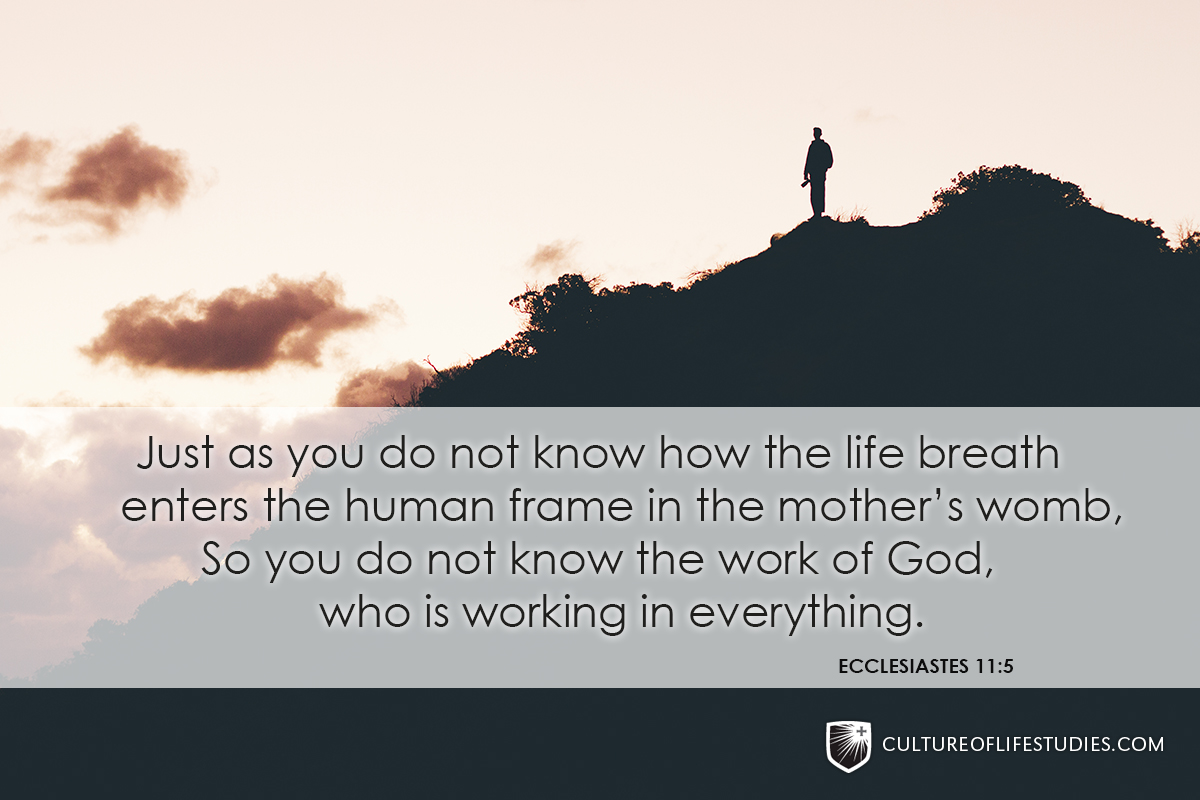 """Just as you do not know how the life breath enters the human frame in the mother's womb, So you do not know the work of God, who is working in everything.""—Ecclesiastes 11:5"