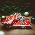 5 Must-Read Pro-Life Christmas Stories