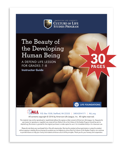 Defend Life: The Beauty of the Developing Human Being